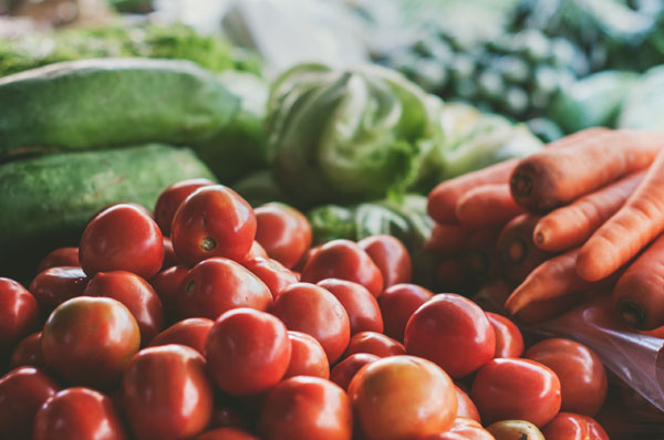 Cuándo plantar tomates | La Huertoteca