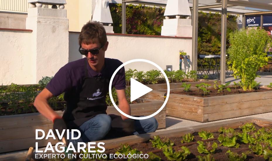 David Lagares, experto en cultivo ecológico
