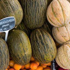Cultivo de melones en el huerto