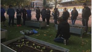 Formación sobre cultivo orgánico para profesores