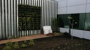 Actividades con fundaciones sobre cultivo ecológico