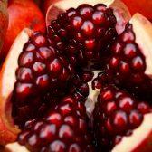 Granada, fruto