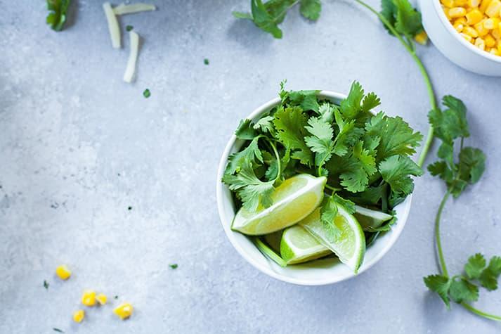 Cómo se cultiva el cilantro