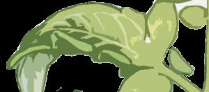 Falta de calcio en las hojas