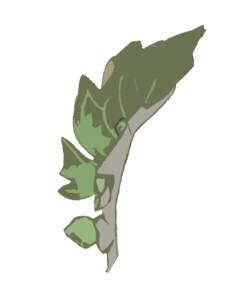 Falta fósforo hojas