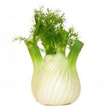hinojo: planta aromática