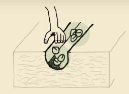 A golpes: tipos de siembra