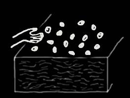 Al voleo: tipos de siembras