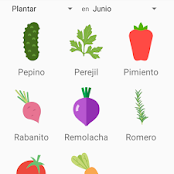 Macetohuerto app