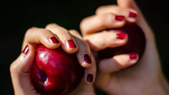Recogida de fruta en julio