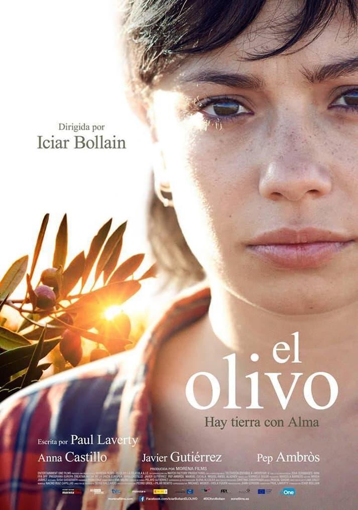 El Olivo, película dirigida por Iciar Bollaín