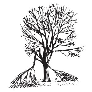 Árbol que sufre daños menores