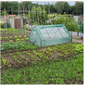 Invernadero de poliuretano para huertos